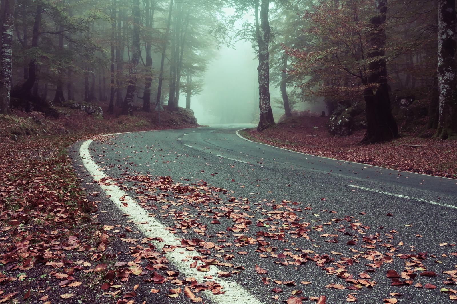 Zombie_Road_1600