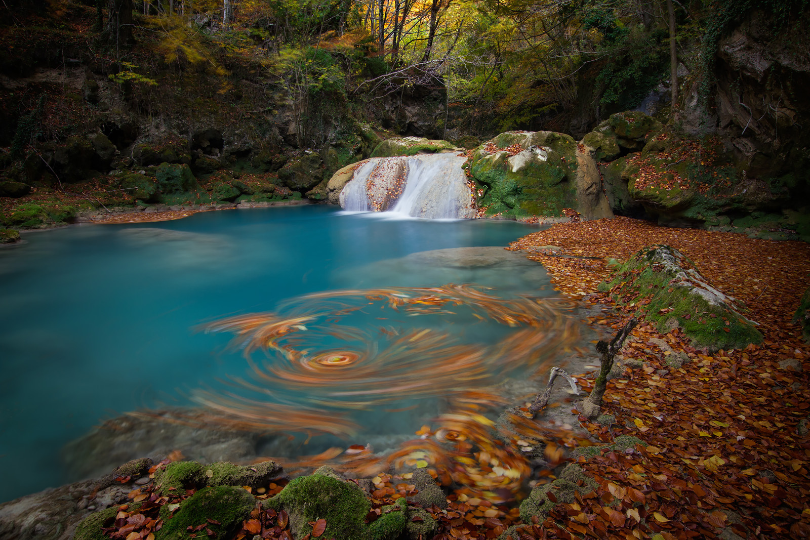 Autumn_Revolution_II_1600