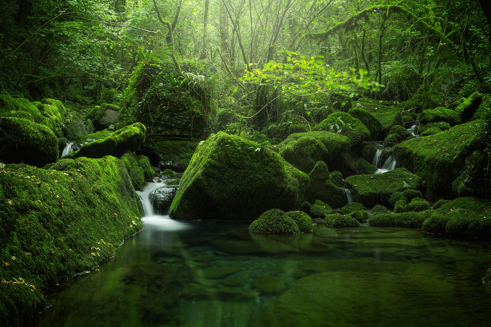 The_Green_Realm_III_1600